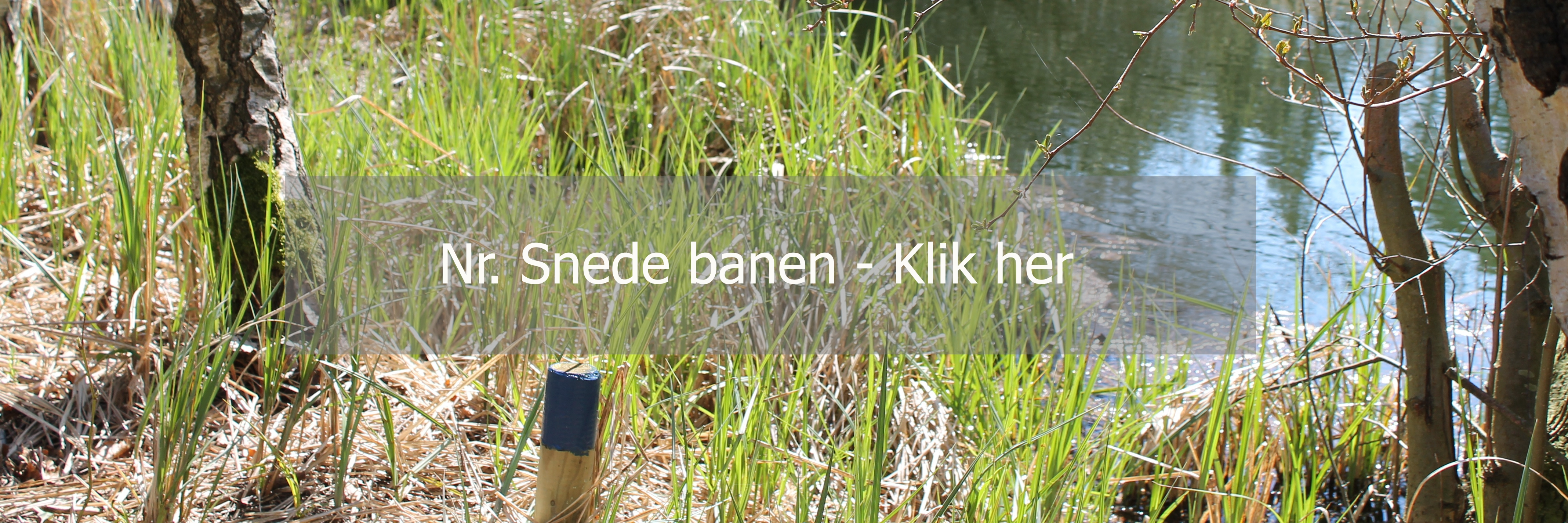 3Dbaner_hjemmeside_under_sitepic