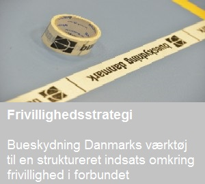 Frivillig_thumb_strategibanner
