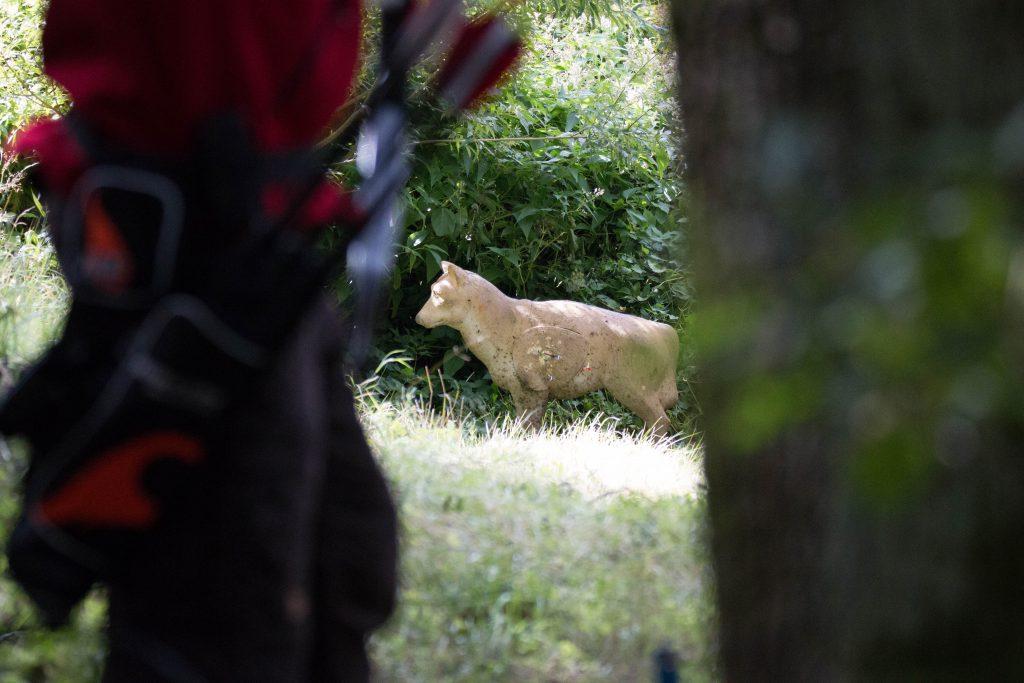 Ulven blev skudt